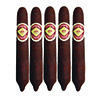 Diamond Crown No.6 Figurado Maduro 5 Pack