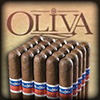 Flor de Oliva Corojo 7x50 Cigars Bundle of 20