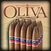 Flor de Oliva Gold 7x50 Cigars Bundle of 20