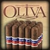 Flor De Oliva Original Bundle Cigars