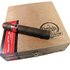 Wild Bunch Honest Abe Cigars