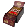 Rose Of Sharon Robusto 5 Pack