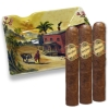 Brick House Ashtray Gift Set with cigars